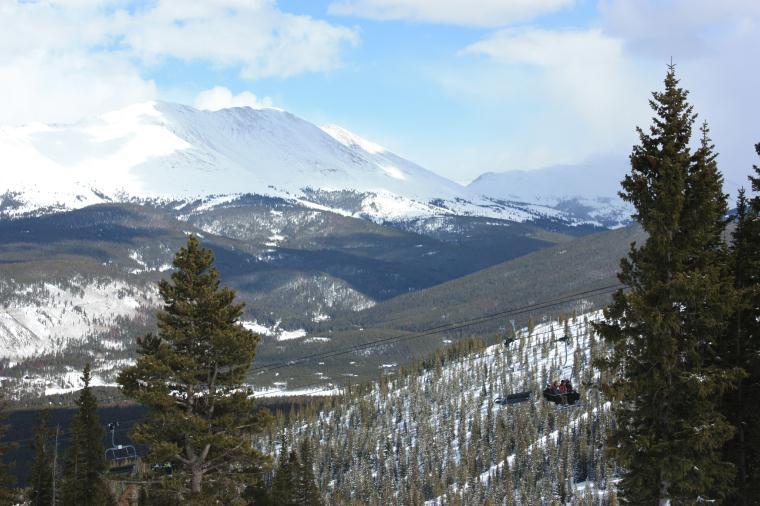 Breckenridge Ski Resort Forest