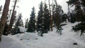 Mary Jane Ski Area Trees Colorado
