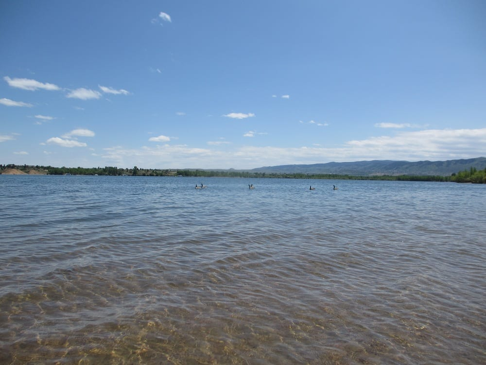 Chatfield lake is almost double the size of cherry creek lake for Chatfield reservoir fishing