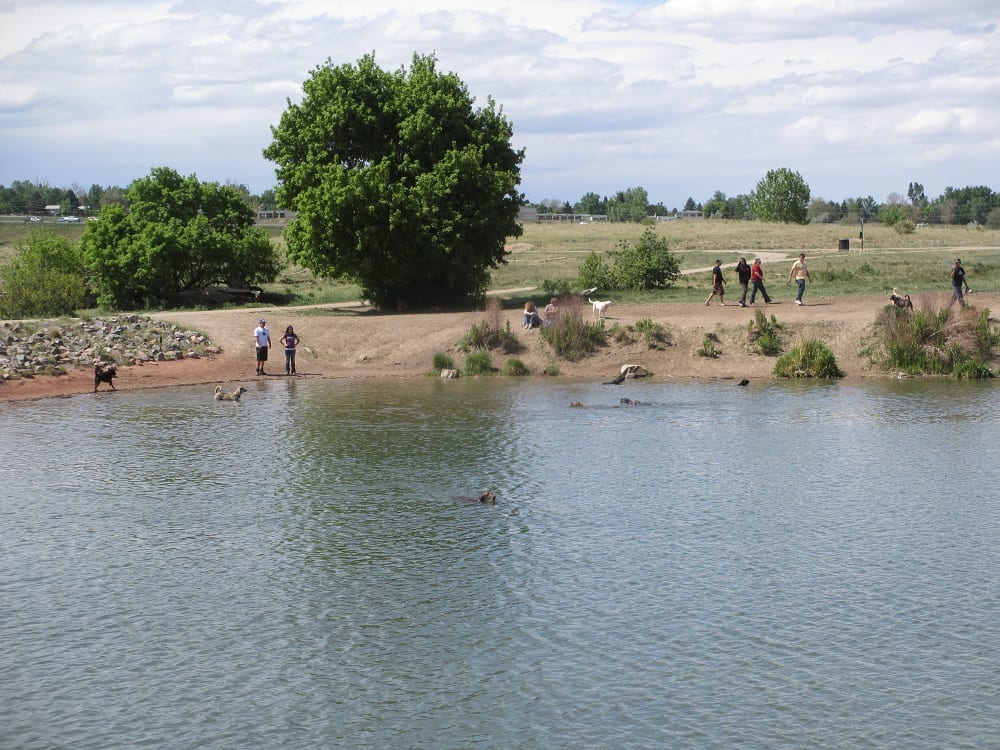 Chatfield state park colorado travel blog for Chatfield reservoir fishing report