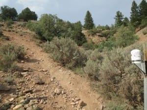 Radium Hot Springs Hike