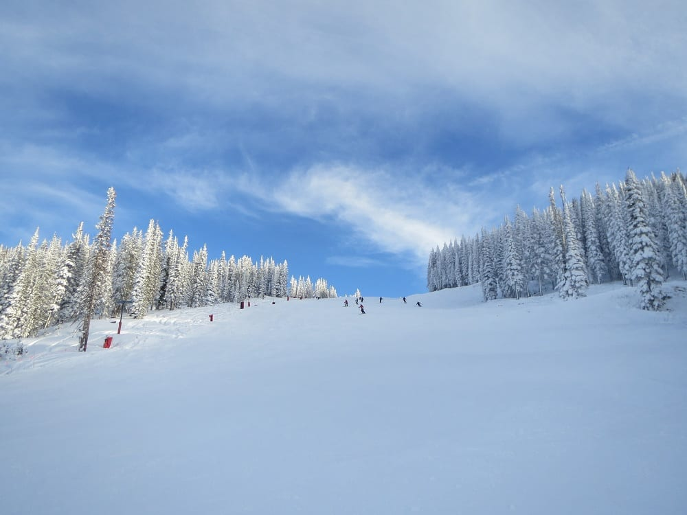 Steamboat Ski Resort Buddy's Run