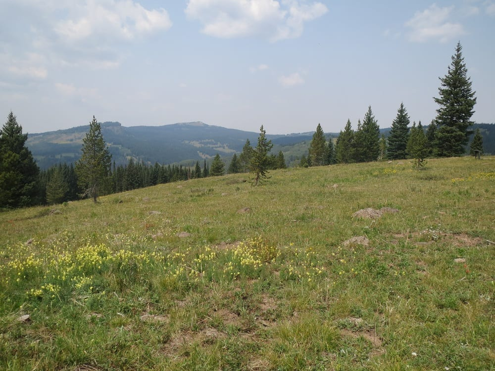 Getting Lost On The Flat Tops Trail Scenic Byway Driving