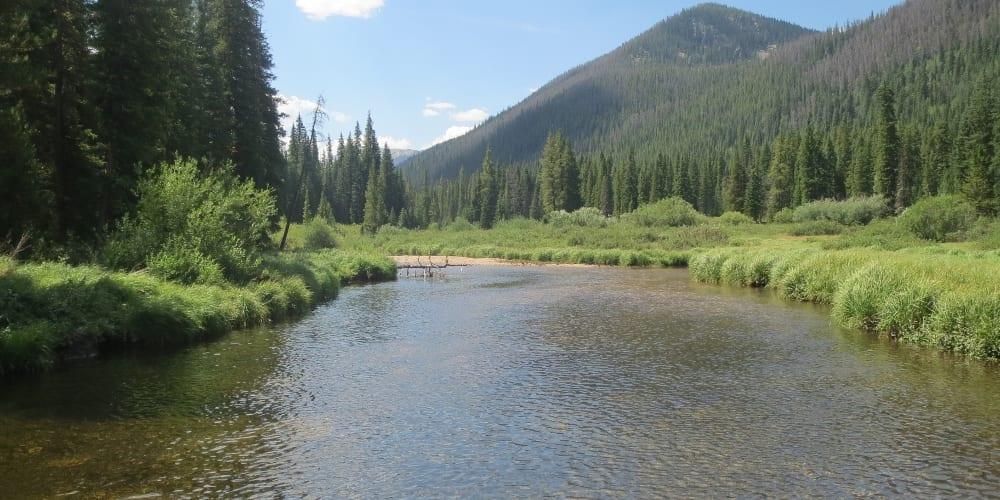 Vasquez Ridge Creek