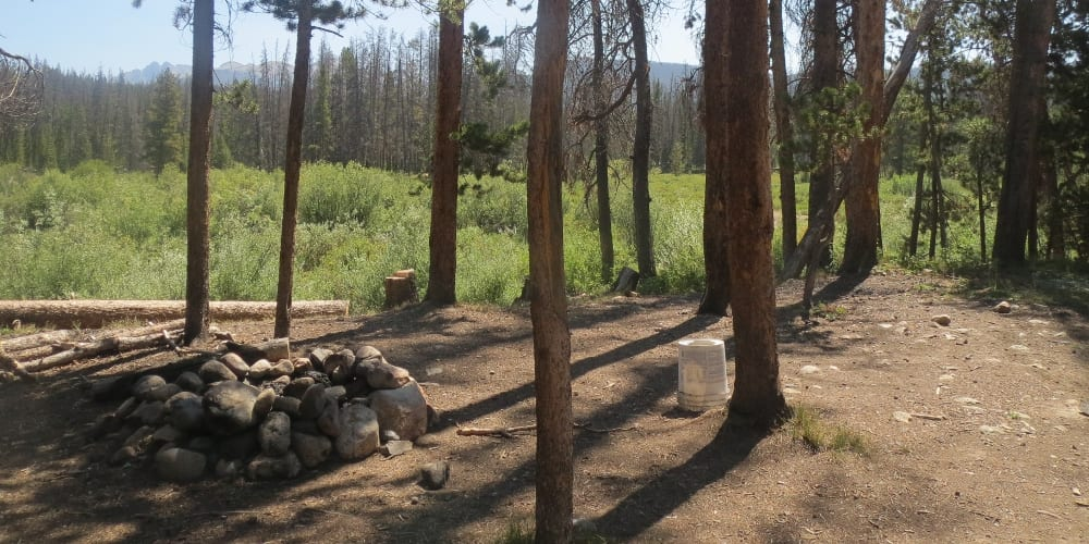 Roosevelt National Forest Gould Dispersed Campsite