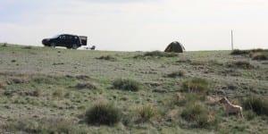 Pawnee National Grasslands Car Camping