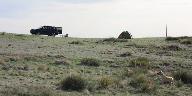 Pawnee National Grasslands Car Camping