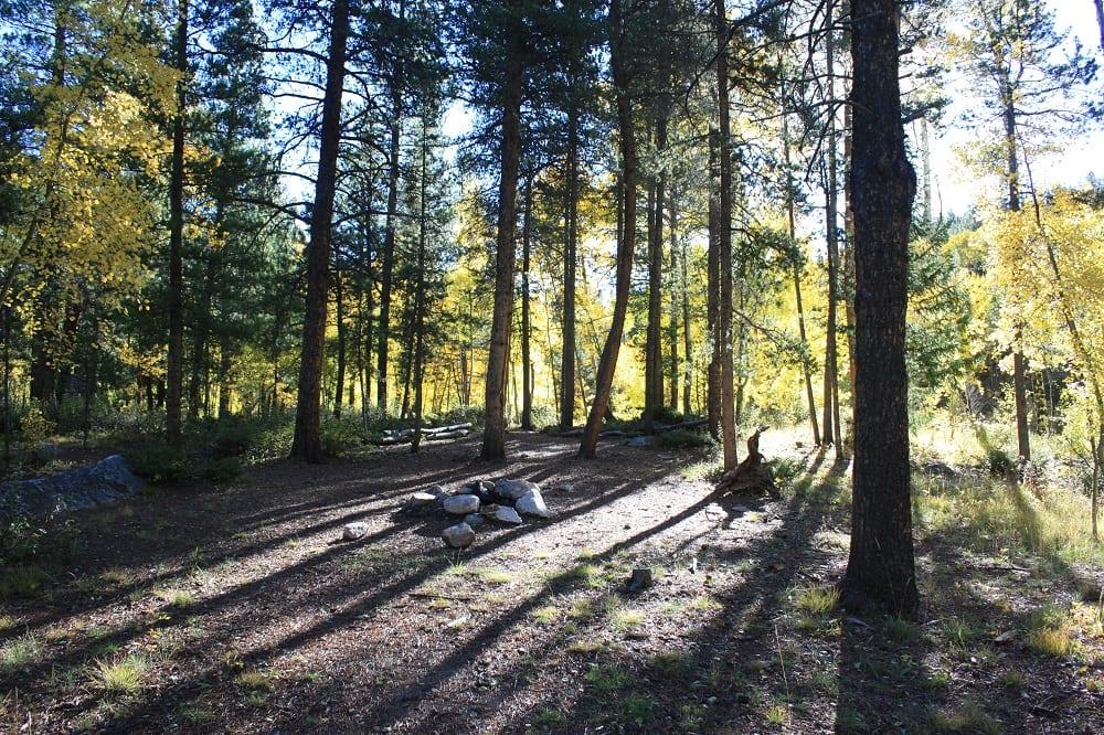 Cottonwood Pass Dispersed Campsite
