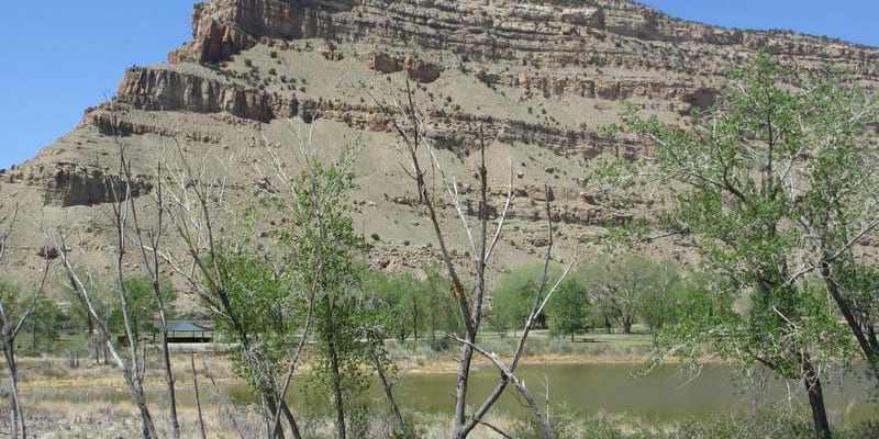 Colorado River State Park