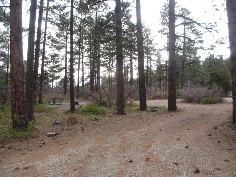 Mancos State Park West Campground