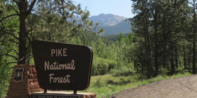 Pike National Forest