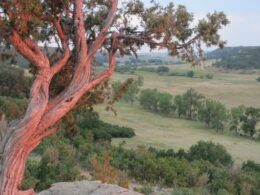 Castlewood Canyon State Park