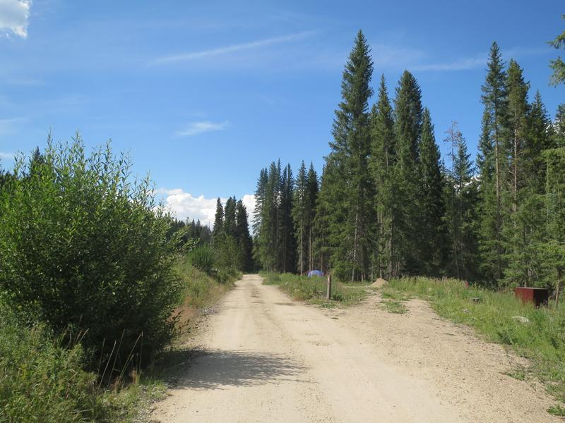 Arapaho National Forest North Central Colorado Biking