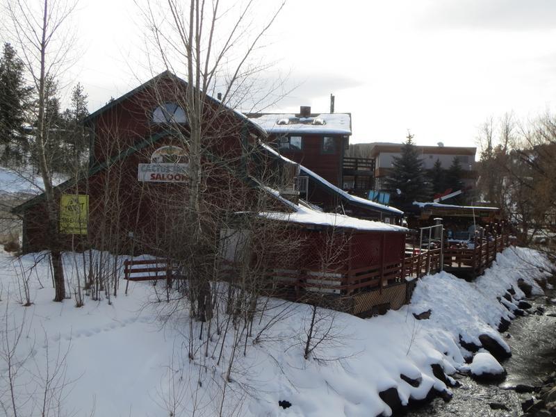 City Of Colorado Springs >> Evergreen   Colorado Towns