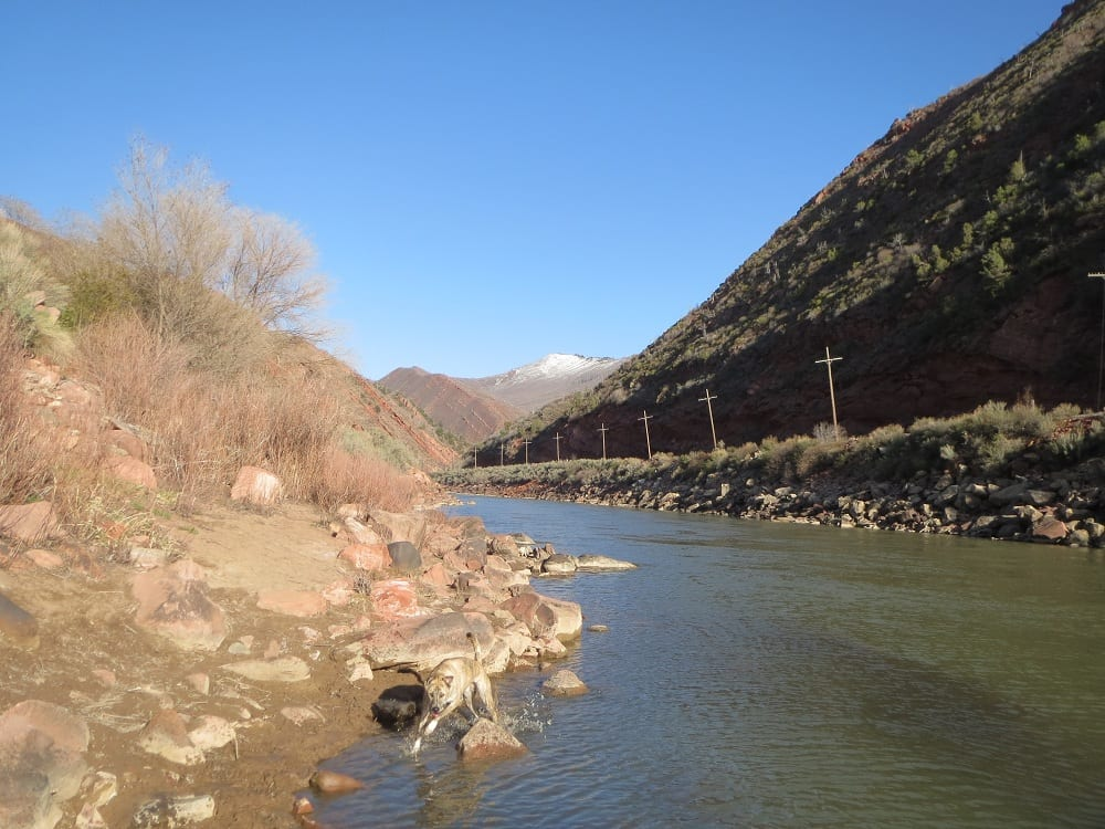 South canyon springs