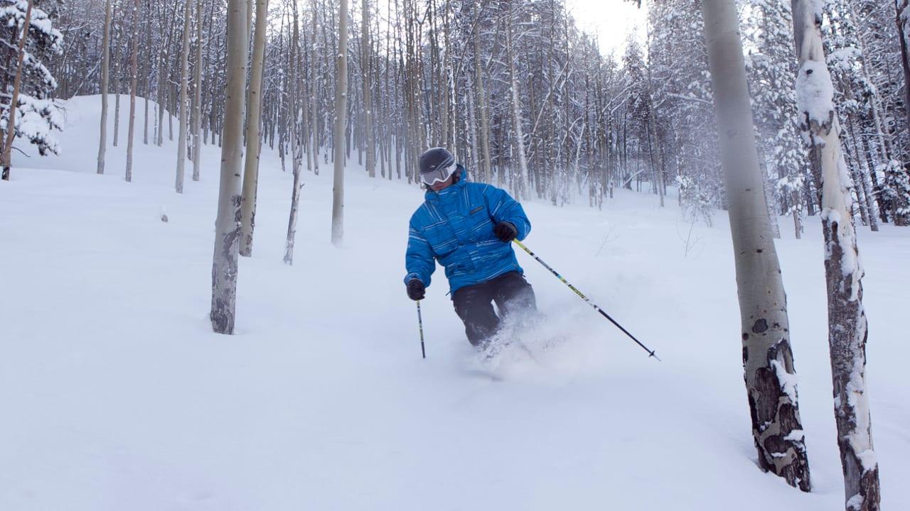 Beaver Creek Tree Skiing Colorado