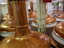 Colorado Brewery Tours