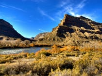Colorado River State Park