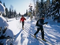 Colorado Cross Country Skiing