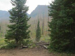 Flat Tops Wilderness