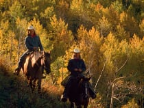 Colorado Horseback Riding