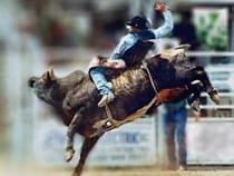 Colorado Rodeos