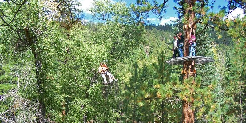 Soaring Tree Top Adventures