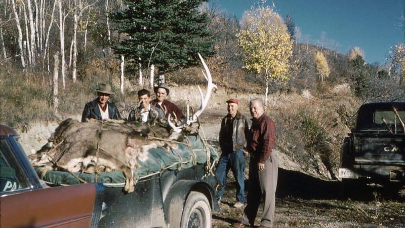 Colorado Hunters Elk