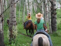 Colorado Dude Ranches