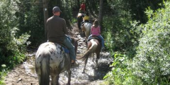 Horseback Riding Breckenridge