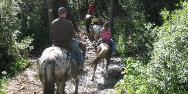 Horseback Riding Breckenridge