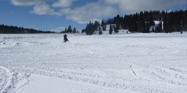Snowmobiling Rabbit Ears Pass