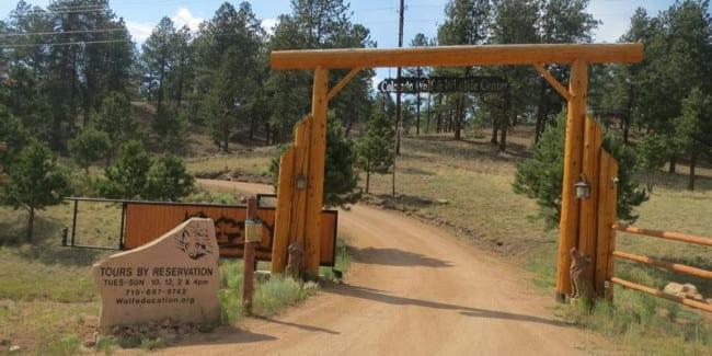 Colorado Wolf Wildlife Center