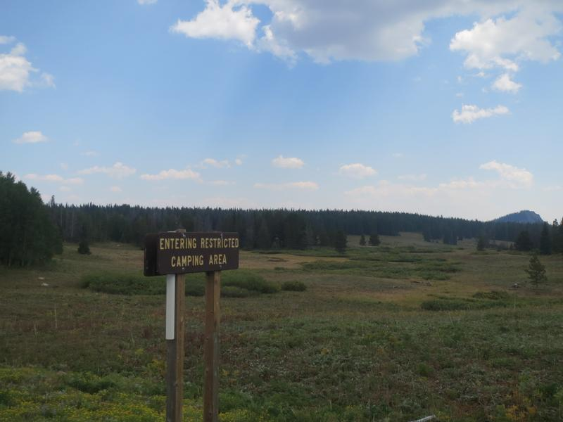 Rabbit Ears Pass Retreat Has Terrace and Cable/satellite ...