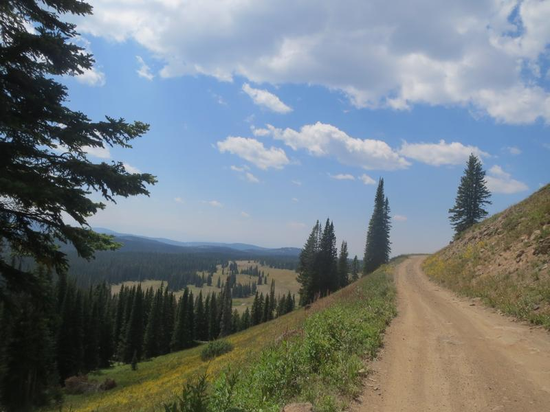 The Best ATV & OHV Trails in Colorado | Visit Grand County