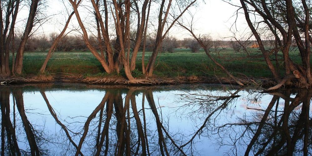 Prewitt Reservoir State Wildlife Area