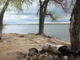Prewitt Reservoir