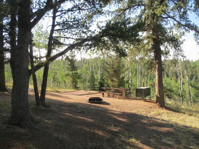Mueller State Park Walk-In Tent Campground