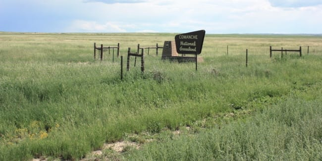 Comanche National Grassland