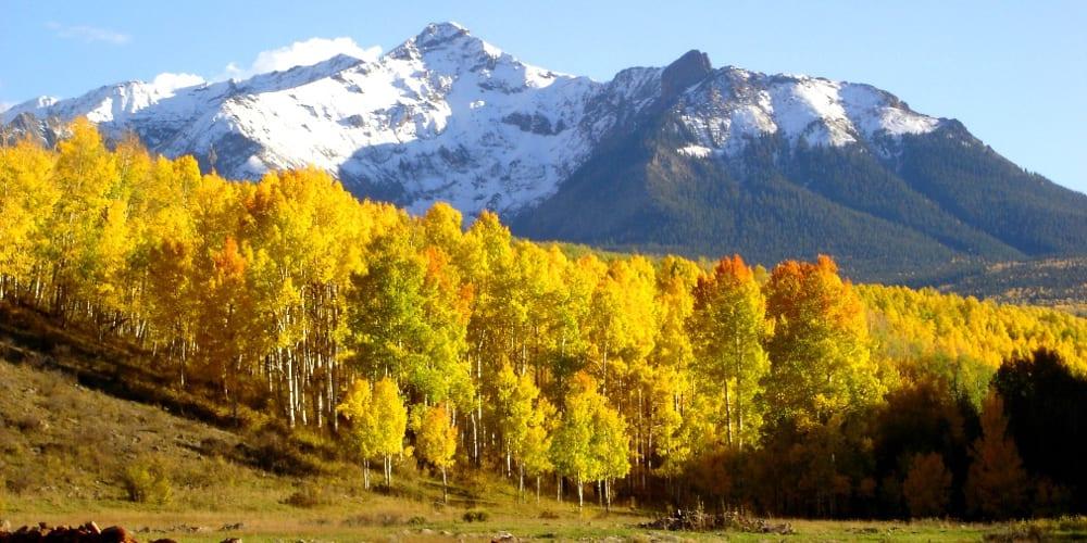 Last Dollar Road Fall Colors