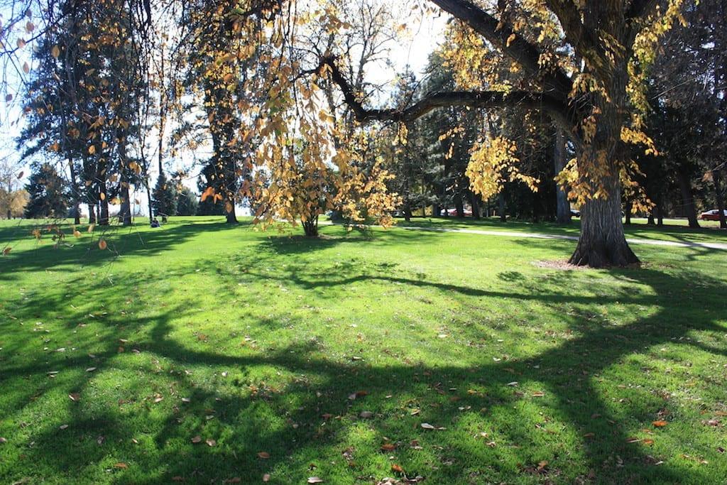 Cheesman Park Denver Colorado City And County Parks