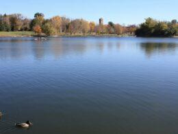 Washington Park Grasmere Lake