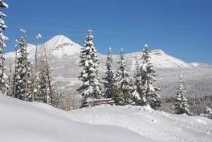 Durango Nordic Center Trail Bench