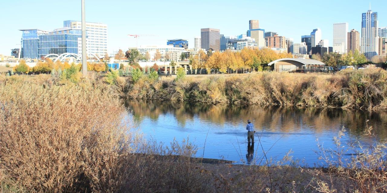 Fishing South Platte River Denver