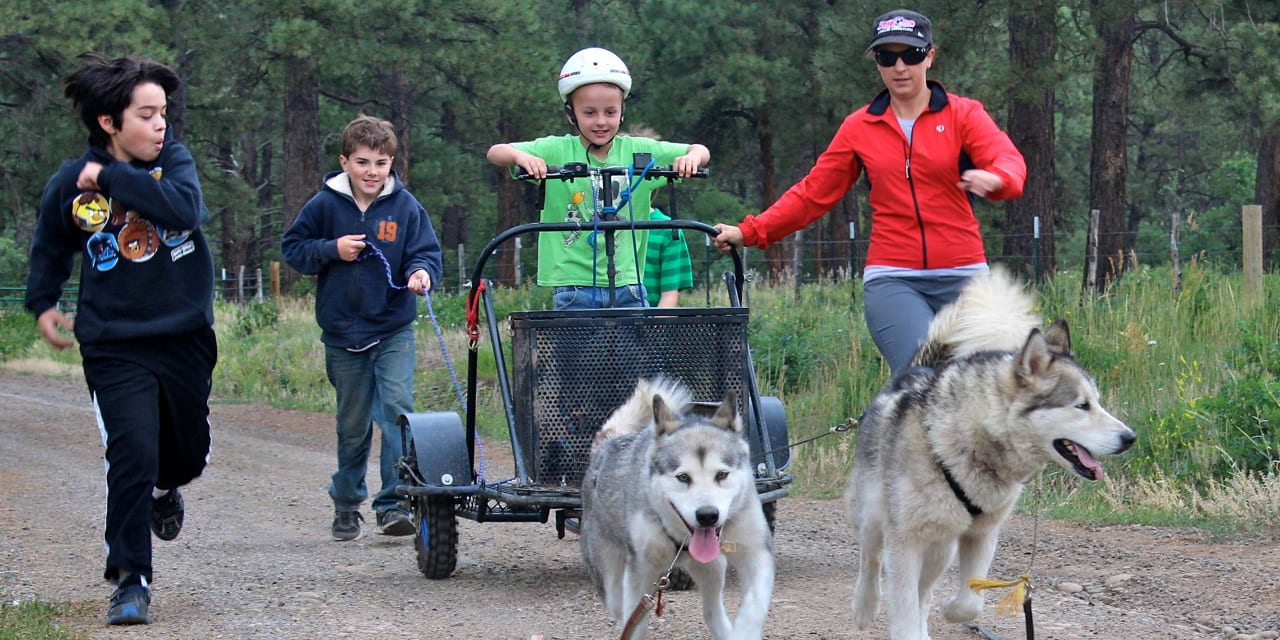 Pagosa Dogsled Adventures Summer Camp
