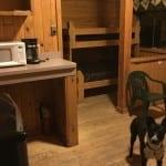 Vega State Park Cabin Interior