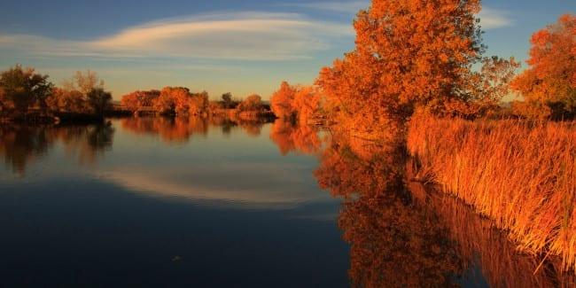 Lake Mary Rocky Mountain Arsenal