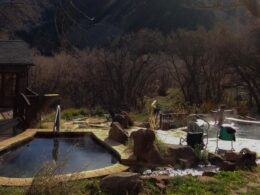 Avalanche Ranch Cabins Hot Springs