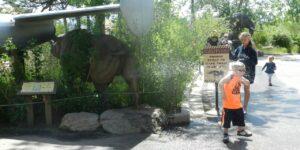 Cheyenne Mountain Zoo Rhino Spray
