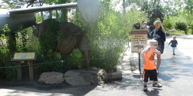 Cheyenne Mountain Zoo Rhino Spray